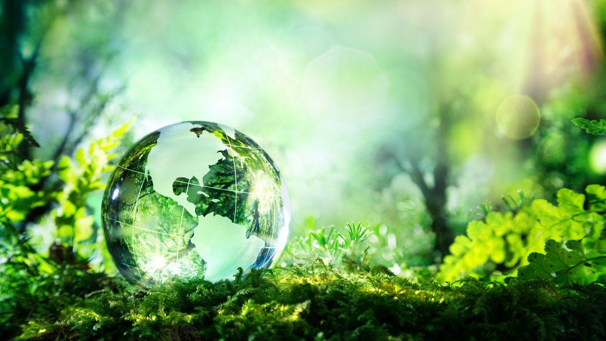 clear globe