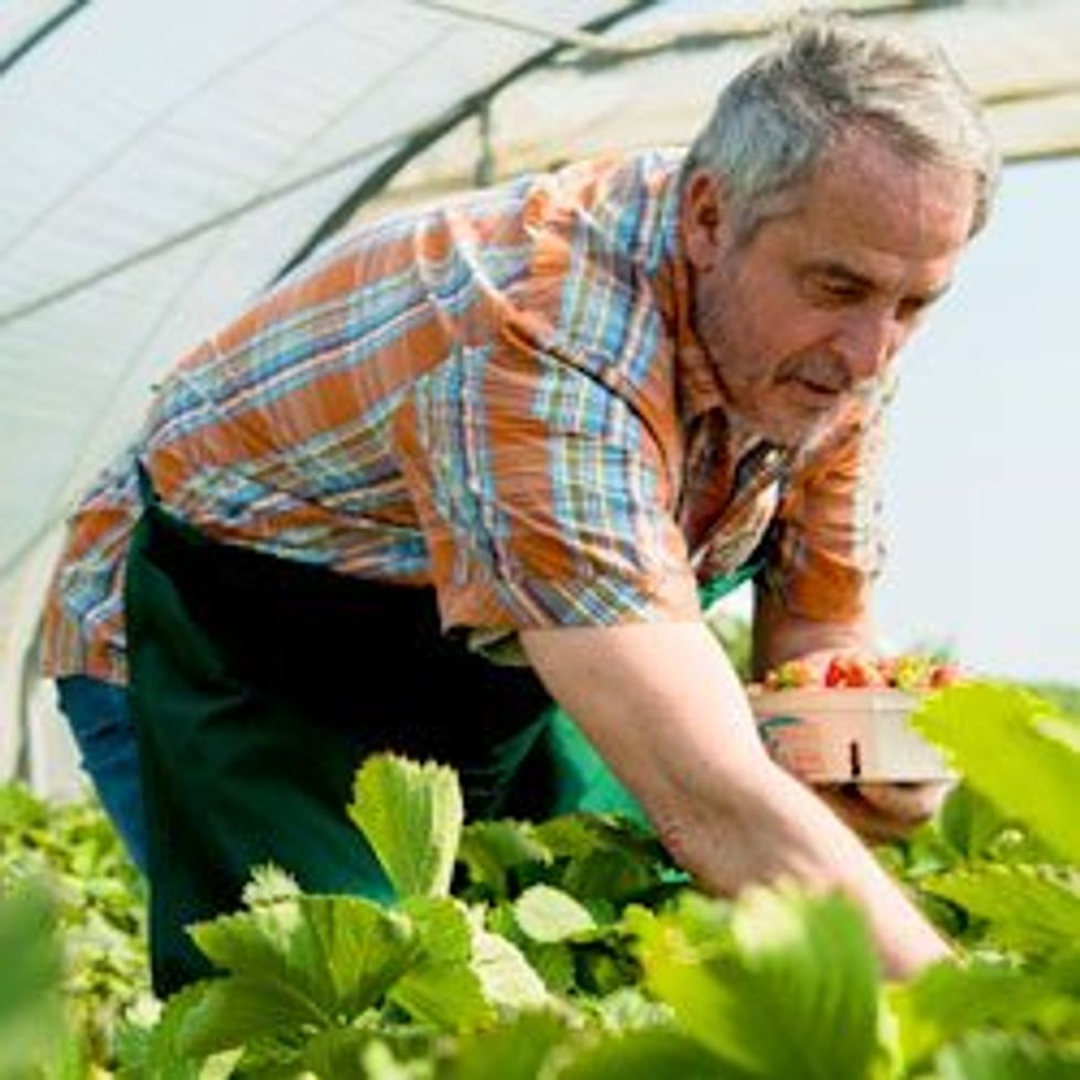 Fresh produce for cold chain delivery