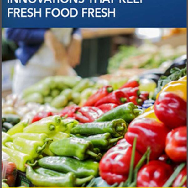 Cold Chain Warehousing: Innovations That Keep Fresh Food Fresh