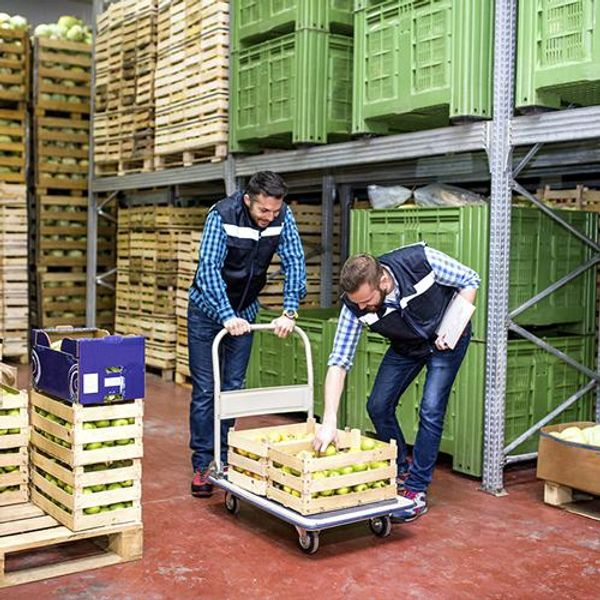 Make the Most of Your Food and Beverage Warehouse Space